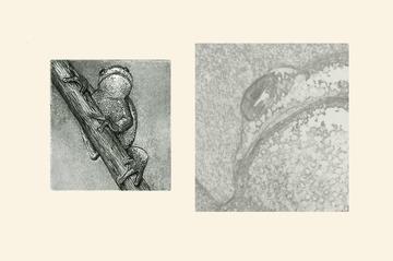 Aquatinta, rechts Detail