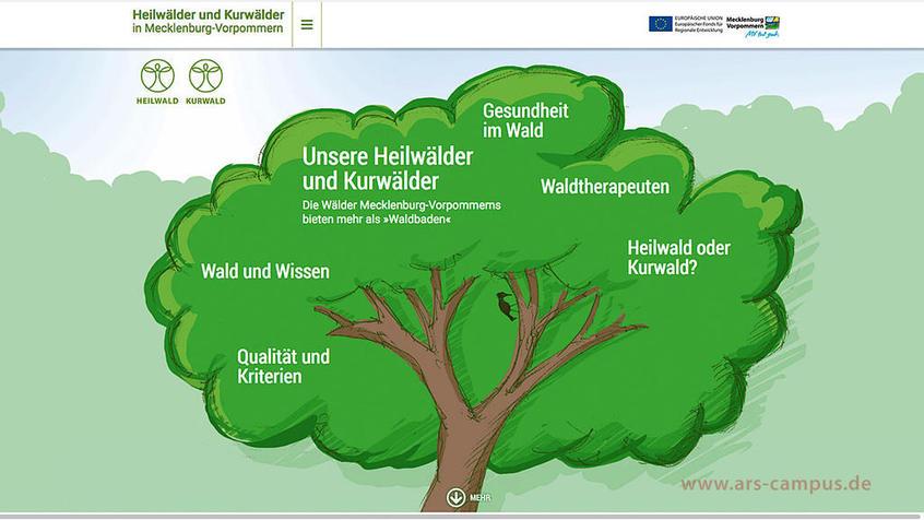 ars-campus, Webdesign für die Kur-und Heilwälder in Mecklenburg-Vorpommern
